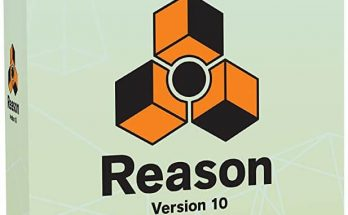 Reason Crack logo